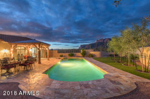 9694 E SAGUARO SUMMIT Court