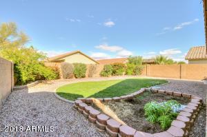41648 W Corvalis Lane, Maricopa, AZ 85138