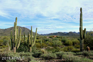 22909 E PLEASANT VIEW Road Lot 10, Fort McDowell, AZ 85264