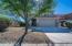 Natural desert landscape front yard