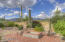 Enjoy mature mesquite and Palo Verde trees