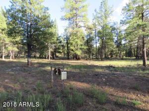 2 Wood Springs Road, Munds Park, AZ 86017