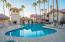 Community Pool & Spa Area
