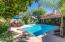 Lush landscaping complete with huge lemon tree overlooking the wash for privacy