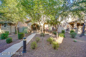 1041 S CHESHIRE Lane, Gilbert, AZ 85296
