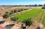 50459 W PAPAGO Road, Maricopa, AZ 85139
