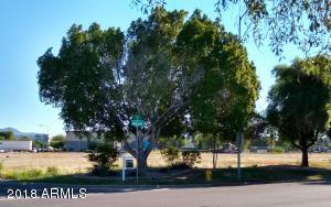 4510 E IVY Street, Mesa, AZ 85205