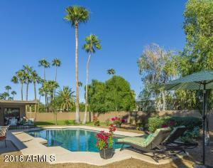 WHAT A VIEW AS YOU ARE SUNNING BY THE POOL! SO MANY BEAUTIFUL MATURE PALM TREES!