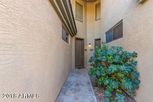 705 W QUEEN CREEK Road, 1184