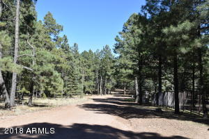 2495 Middle Loop Lot 694, Forest Lakes, AZ 85931