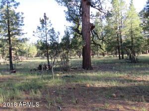 3 Wood Springs Road, Munds Park, AZ 86017