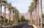 Can you believe this is the desert? North view on Verrado Way at Main Street.
