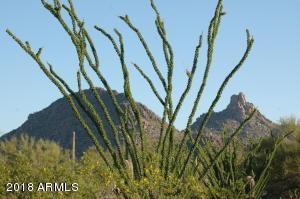 9382 E DESERT VISTA Road, Scottsdale, AZ 85255