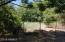 Back .25 acre has fig, pomegranate, orange, apple, pear, lemon, & pecan trees