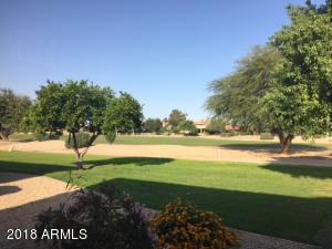 14106 W SKY HAWK Drive, Sun City West, AZ 85375