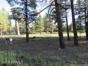 4 Wood Springs Road, -, Munds Park, AZ 86017