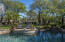 Palm tree paradise!