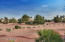 beautiful desert landscape s