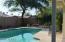 Back yard Pool