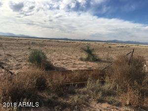XXXX NE Ranch Road, McNeal, AZ 85617