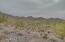 10591 E DIAMOND RIM Drive, 2403, Scottsdale, AZ 85255