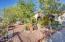 Easy maintenance desert landscaping