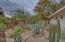 sonoran desert lovers will enjoy the beautiful color and cacti