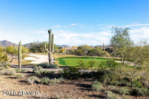 Ironwood #8