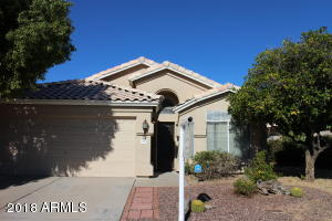 3510 E EDNA Avenue, Phoenix, AZ 85032