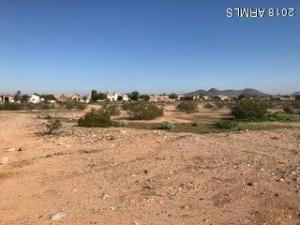 10102 W PINNACLE PEAK Road, -