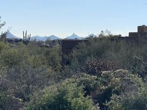 Pinnacle Peak Views