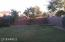 Spring/Summer Grass