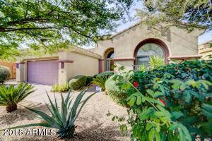 22016 N 36TH Street, Phoenix, AZ 85050
