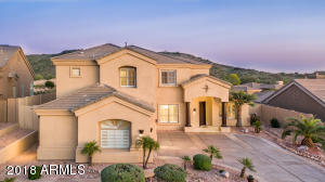 223 W DESERT FLOWER Lane
