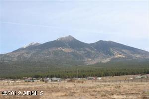 4549 W Laskin Trail, 17