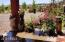 2620 E WALNUT Drive, Show Low, AZ 85901