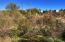 000 N School House Road, -, Cave Creek, AZ 85331