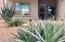 Desert landscaping.