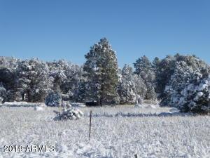 295 N Seeley Drive, C, Young, AZ 85554