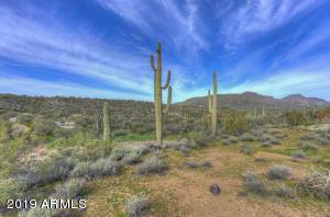 41604 N OLD STAGE Road, -, Cave Creek, AZ 85331