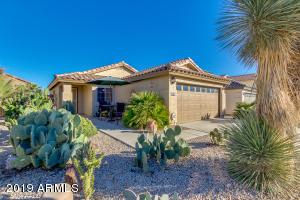 1096 E LAKEVIEW Drive, San Tan Valley, AZ 85143