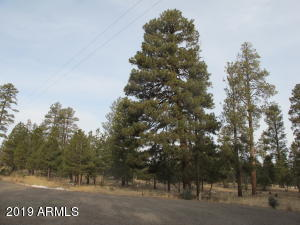 5227 TAOS Circle Lot 155, Happy Jack, AZ 86024