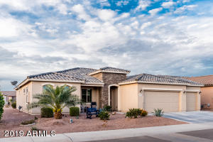 41683 W SNOW BIRD Lane, Maricopa, AZ 85138