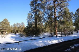 3353 Pine Cone Drive, 156