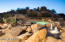 29492 N 111TH Way, Scottsdale, AZ 85262