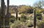 27518 N 103RD Street, 195, Scottsdale, AZ 85262