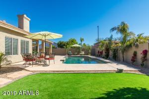 New maintenance free turf and landscaping! SOUTH BACKYARD EXPOSURE! MOST DESIRED IN ARIZONA!