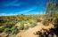 Open natural desert with wonderful vegetation and lots of saguaros, with views to the North.