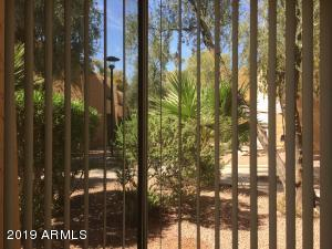 8055 E THOMAS Road, D105, Scottsdale, AZ 85251