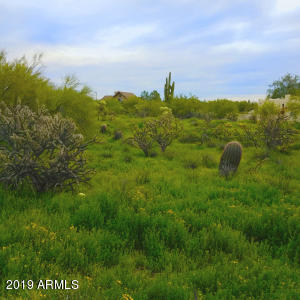 31225 N 51st Place N, 42, Cave Creek, AZ 85331